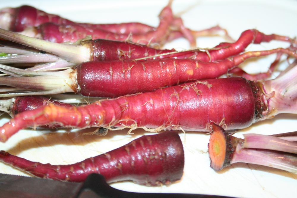 Purple carrots!