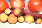 Yummy purple carrots and tomatoes from the garden