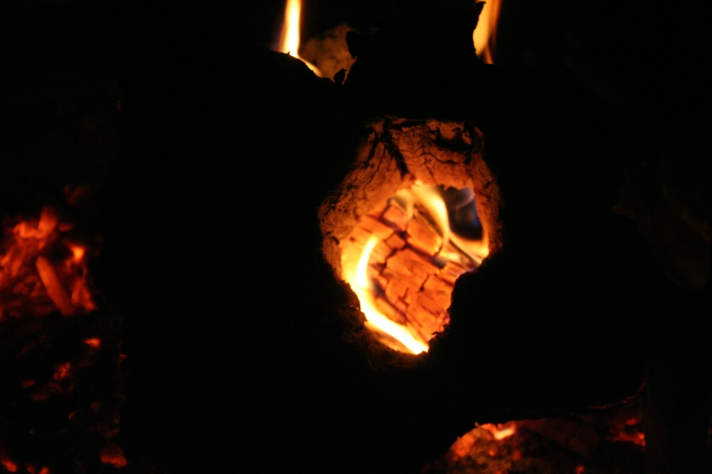 Horned Blazing Cedar Log