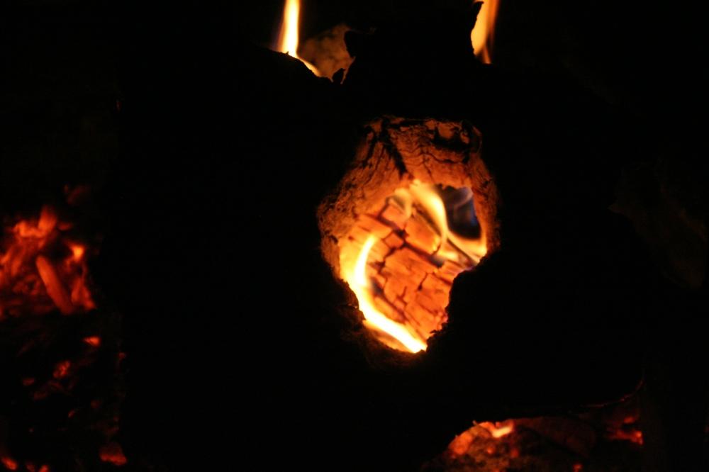 Horned Blazing Cedar Log